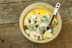 Möglig pudding Giftig mat mycket av formen sjuklig mat Spor av svampen för mat Arkivfoto