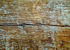 Möglig träbeläggning med sprickor Royaltyfria Bilder