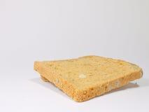 Mögligt bröd Royaltyfri Foto
