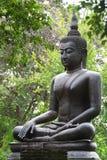 Mönch im Garten Lizenzfreie Stockbilder