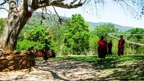 Mönche unter dem Baum nahe dem Kloster Chimi Lhakhang, Lobesa, Bhutan lizenzfreie stockfotografie
