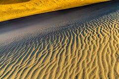 Mönstra i sanden Arkivfoton