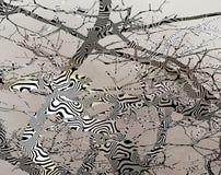 Mönstrad bonsaiträdform Arkivbild
