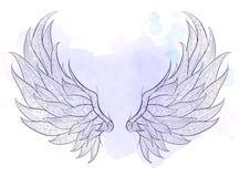 mönstrade vingar Royaltyfri Bild