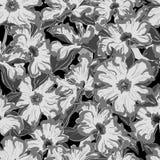 Mönstrar den seamless vektorn för pingstliljan Arkivbild