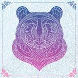 Mönstrat huvud av björnen Royaltyfria Foton