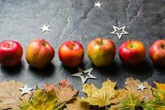 Mörk bakgrund för höst eller ram av stupade gulingsidor och mogna röda äpplen Ram för text eller foto Tillämpbart för Arkivfoto