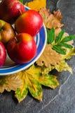 Mörk bakgrund för höst eller ram av stupade gulingsidor och mogna röda äpplen Ram för text eller foto Tillämpbart för Arkivbilder