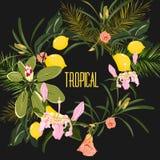 Mörk cirkelram för vektor med tropiska sidor och blommabakgrund stock illustrationer