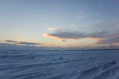 Mörk härlig himmel Solnedgång Sun Snabba sväva moln frostig solnedgång för verklig vinter i fältet Arkivfoto