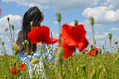 Mörk haired härlig modell som poserar i vallmofältet av blommor Arkivfoto