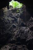 Mörk ingång till den naturliga grottan Royaltyfria Bilder
