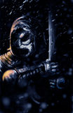 mörk krigare Arkivfoto