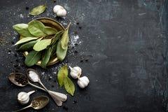 Mörk kulinarisk bakgrund med lagerbladar, salt, peppar och vitlök, sikt från över, kopieringsutrymme för recepttext Royaltyfri Fotografi