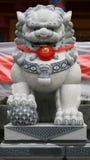 mörk lion Royaltyfria Bilder