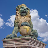 mörk lion Royaltyfri Foto