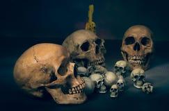 Mörk magisk häxasamling för skalle arkivfoto