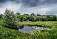 Mörk molnig himmel över en liten sjö som omges av träd, starrgräs Fotografering för Bildbyråer