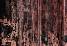 Mörk naturlig gammal wood textur Gamla paneler för Grungebakgrund med Royaltyfri Fotografi