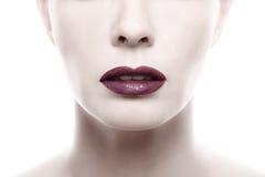 Mörk purpurfärgad läppstift på Pale Woman Face Arkivfoton