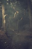 Mörk ritual Royaltyfria Bilder