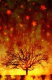 mörk silhouettetree Arkivbilder
