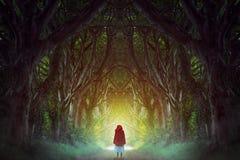 mörk skogväg Arkivbild