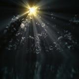 mörk sky Arkivfoto
