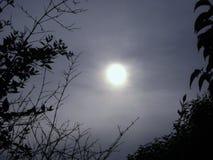 mörk sky Royaltyfria Foton