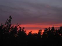mörk solnedgång Royaltyfri Bild