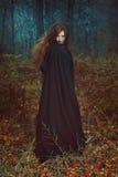 Mörk stående av skogvårdaren arkivfoto
