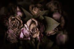 Mörk tappningstilbild av en bukett av rosor arkivbild