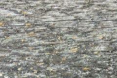 Mörk textur av gammalt naturligt trä med sprickor från exponering till solen och vind Arkivfoto