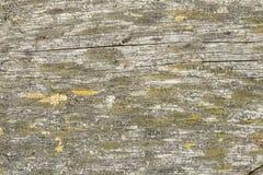 Mörk textur av gammalt naturligt trä med sprickor från exponering till solen och vind Arkivbild