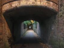Mörk tunelsikt Royaltyfri Bild