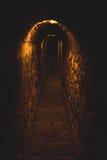 mörk tunnel Arkivfoton