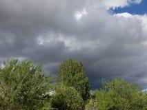 mörk white för surface vatten för sky för floesishav Royaltyfri Foto