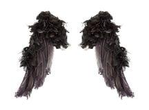 Mörka ängelvingar Royaltyfri Fotografi