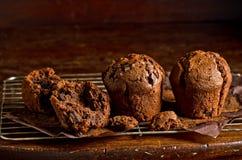 Mörka chokladmuffiner Fotografering för Bildbyråer