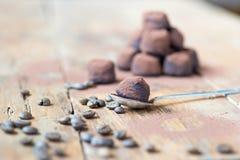 Mörka chokladtryfflar med kakaopulver Arkivfoto