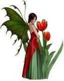 Mörka Haired röda Tulip Fairy Royaltyfria Bilder