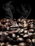 Mörka kaffebönor Royaltyfri Bild