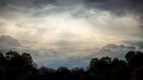 Mörka konturer av träd på bakgrund av dramatisk stormig himmel Arkivfoton