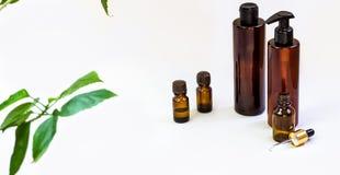 Mörka kosmetiska flaskor och gröna naturliga sidor på en ljus bakgrund Blogger för salong för kopieringsutrymmeskönhet, sal royaltyfria bilder