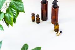 Mörka kosmetiska flaskor och gröna naturliga sidor på en ljus bakgrund Blogger för salong för kopieringsutrymmeskönhet, sal royaltyfri foto