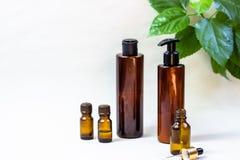 Mörka kosmetiska flaskor och gröna naturliga sidor på en ljus bakgrund Blogger för salong för kopieringsutrymmeskönhet, sal royaltyfri fotografi
