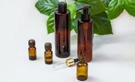 Mörka kosmetiska flaskor och gröna naturliga sidor på en ljus bakgrund Blogger för salong för kopieringsutrymmeskönhet, sal arkivfoton