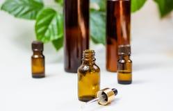 Mörka kosmetiska flaskor och gröna naturliga sidor på en ljus bakgrund Blogger för salong för kopieringsutrymmeskönhet, sal arkivbilder