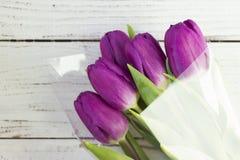 Mörka lila tulpan i plast- förpacka på en vit träbakgrund arkivfoton