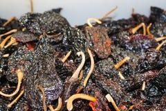 Mörka mexicanska chilies i massa i marknaden - ett milt till medlet torkade - en Poblano som är delen av den heliga trinityen av  royaltyfria foton